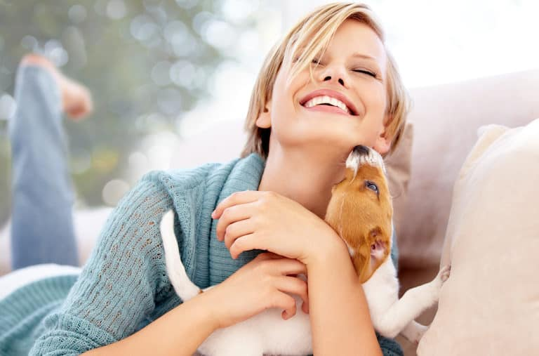 Man's best friends and the enemies they carry - Diseases we can get from pets - Intercare Health Hub