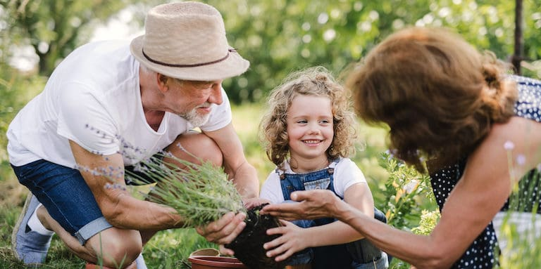 Gardening for Good Health and Wellbeing - Intercare Health Hub